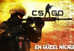 cs go nickleri
